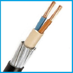 get 2 core x 10mm cu xlpe pvc swa armoured cable price list